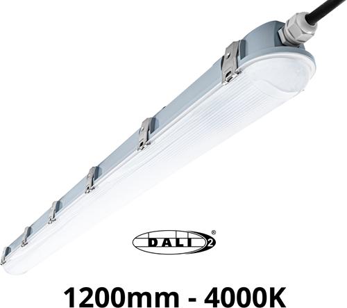 Pragmalux LED TL Waterdicht Armatuur Zeus IP66 120cm 35W 4850lm 4000K 5x2,5mm Doorvoerbedrading Philips DALI Dimbaar (2x36W)